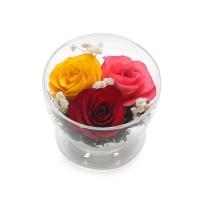 АКЦИЯ! Розы 3 бутона (красный, желтый, розовый) (высота 6,диаметр 8,5)