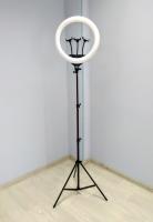 Кольцевая светодиодная LED лампа со штативом ZB-F348 с пультом 45 см