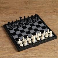 Настольная игра, набор 3 в 1 Зук: нарды, шахматы, шашки