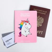 Обложка для паспорта Внешность обманчива, а жизнь жестока