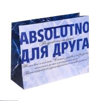 Пакет ламинированный горизонтальный Absolutno для друга, MS 18 × 23 × 10 см