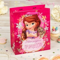 Пакет подарочный С Днем рождения, принцесса, София Прекрасная, (Ламинир, 23 х 27 х 11.5 см)